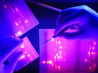 DNA Gels & UV Light