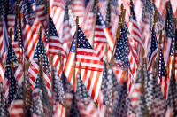 Close up Photograph of American Flags